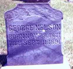 NELSON, GEORGE - Clay County, South Dakota | GEORGE NELSON - South Dakota Gravestone Photos