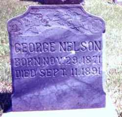 NELSON, GEORGE - Clay County, South Dakota | GEORGE NELSON - South Dakota Gravestone Photos