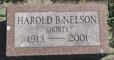 "NELSON, HAROLD B. ""SHORTY"" - Clay County, South Dakota 