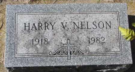 NELSON, HARRY V. - Clay County, South Dakota | HARRY V. NELSON - South Dakota Gravestone Photos