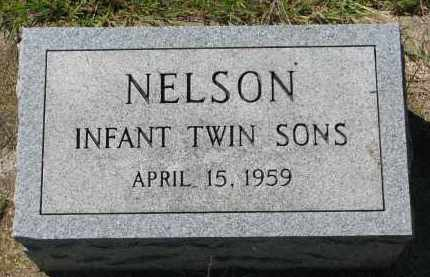 NELSON, INFANT TWINS - Clay County, South Dakota | INFANT TWINS NELSON - South Dakota Gravestone Photos