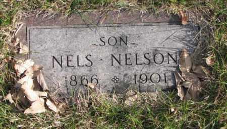NELSON, NELS - Clay County, South Dakota   NELS NELSON - South Dakota Gravestone Photos