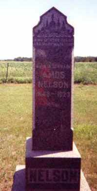 NELSON, RASMUS AMOS - Clay County, South Dakota | RASMUS AMOS NELSON - South Dakota Gravestone Photos