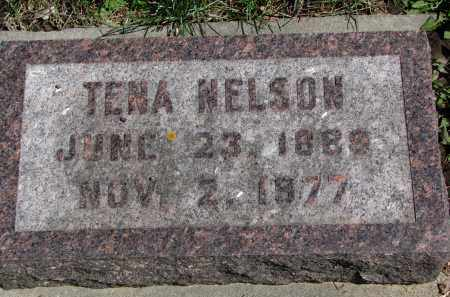NELSON, TENA - Clay County, South Dakota | TENA NELSON - South Dakota Gravestone Photos