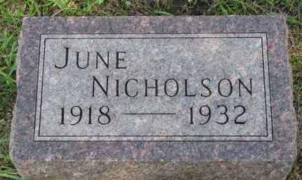 NICHOLSON, JUNE - Clay County, South Dakota | JUNE NICHOLSON - South Dakota Gravestone Photos