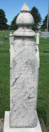 OLESON, BERTA E. - Clay County, South Dakota | BERTA E. OLESON - South Dakota Gravestone Photos