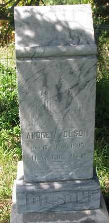 OLSON, ANDREW - Clay County, South Dakota   ANDREW OLSON - South Dakota Gravestone Photos