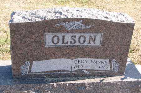 OLSON, CECIL WAYNE - Clay County, South Dakota | CECIL WAYNE OLSON - South Dakota Gravestone Photos
