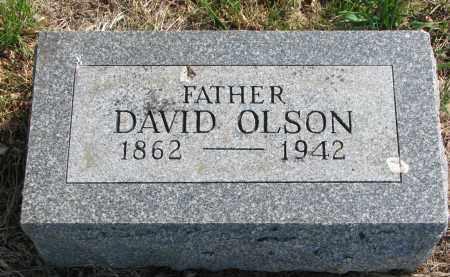 OLSON, DAVID - Clay County, South Dakota | DAVID OLSON - South Dakota Gravestone Photos
