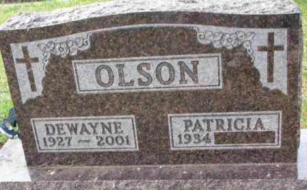 OLSON, PATRICIA - Clay County, South Dakota   PATRICIA OLSON - South Dakota Gravestone Photos
