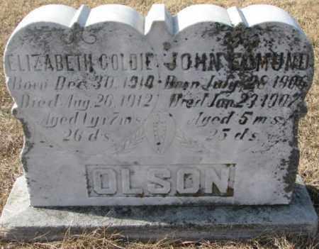 OLSON, ELIZABETH GOLDIE - Clay County, South Dakota | ELIZABETH GOLDIE OLSON - South Dakota Gravestone Photos