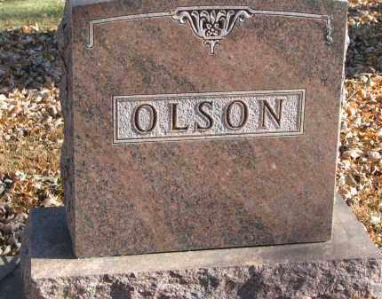 OLSON, FAMILY STONE - Clay County, South Dakota   FAMILY STONE OLSON - South Dakota Gravestone Photos