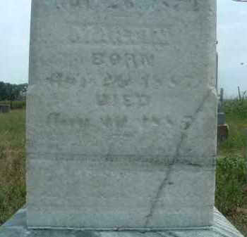 OLSON, MARTIN - Clay County, South Dakota   MARTIN OLSON - South Dakota Gravestone Photos
