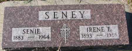 SENEY, IRENE E. - Clay County, South Dakota   IRENE E. SENEY - South Dakota Gravestone Photos