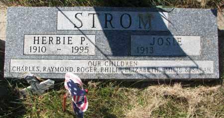 STROM, HERBIE P. - Clay County, South Dakota | HERBIE P. STROM - South Dakota Gravestone Photos