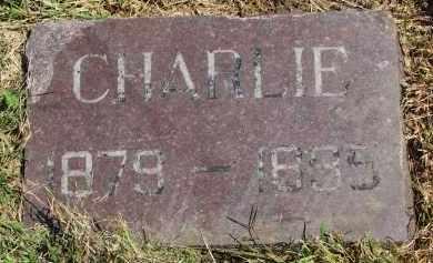 THOMPSON, CHARLIE - Clay County, South Dakota | CHARLIE THOMPSON - South Dakota Gravestone Photos