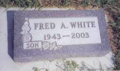 WHITE, FRED ARNOLD - Clay County, South Dakota   FRED ARNOLD WHITE - South Dakota Gravestone Photos
