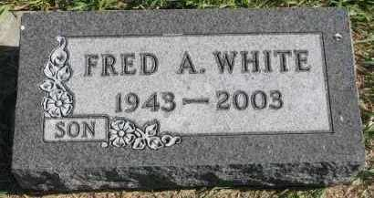 WHITE, FRED A. - Clay County, South Dakota | FRED A. WHITE - South Dakota Gravestone Photos