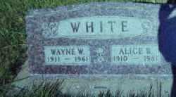 MAXWELL WHITE, ALICE B. - Clay County, South Dakota   ALICE B. MAXWELL WHITE - South Dakota Gravestone Photos