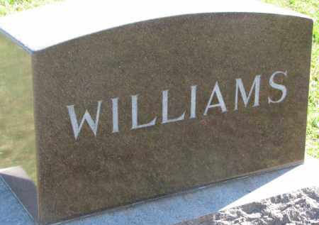 WILLIAMS, FAMILY STONE - Clay County, South Dakota | FAMILY STONE WILLIAMS - South Dakota Gravestone Photos