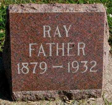 WILLIAMSON, RAY - Clay County, South Dakota   RAY WILLIAMSON - South Dakota Gravestone Photos