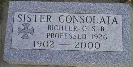 BICHLER, ANNA MARY - Codington County, South Dakota | ANNA MARY BICHLER - South Dakota Gravestone Photos