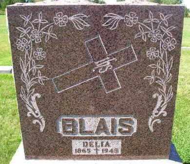 BLAIS, DELIA - Codington County, South Dakota | DELIA BLAIS - South Dakota Gravestone Photos