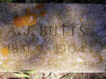 BUTTS, A.J. - Codington County, South Dakota | A.J. BUTTS - South Dakota Gravestone Photos