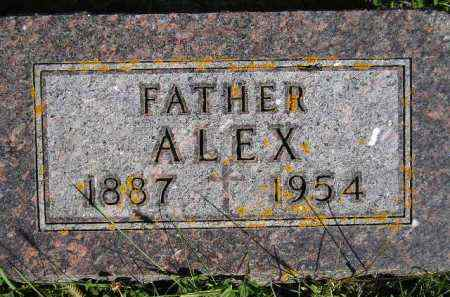 BYER, ALEX - Codington County, South Dakota | ALEX BYER - South Dakota Gravestone Photos