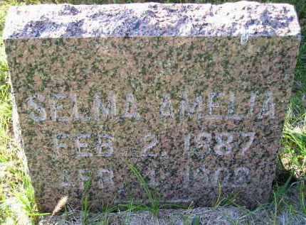 CHILSON, SELMA AMELIA - Codington County, South Dakota   SELMA AMELIA CHILSON - South Dakota Gravestone Photos