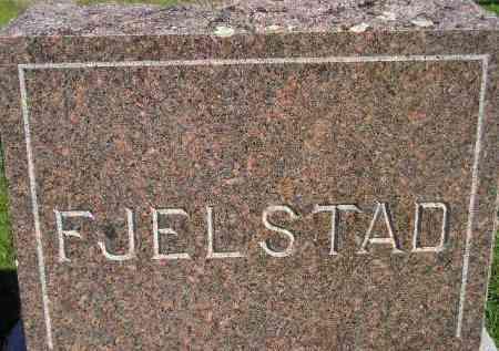 FJELSTAD, FAMILY STONE - Codington County, South Dakota | FAMILY STONE FJELSTAD - South Dakota Gravestone Photos