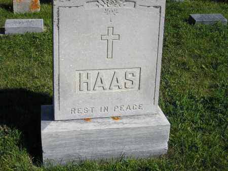 HAAS, FAMILY PLOT - Codington County, South Dakota | FAMILY PLOT HAAS - South Dakota Gravestone Photos