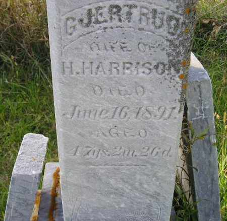 CHILSON HARRISON, GJERTRUD - Codington County, South Dakota | GJERTRUD CHILSON HARRISON - South Dakota Gravestone Photos