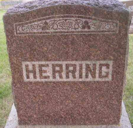 HERRING, FAMILY STONE - Codington County, South Dakota | FAMILY STONE HERRING - South Dakota Gravestone Photos