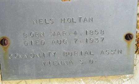 HOLTAN, NELS - Codington County, South Dakota | NELS HOLTAN - South Dakota Gravestone Photos