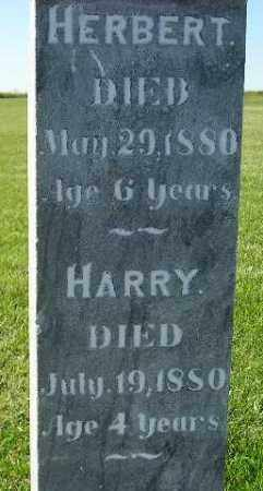 JENKINS, HARRY - Codington County, South Dakota | HARRY JENKINS - South Dakota Gravestone Photos