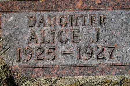 JOHNSON, ALICE JULIET - Codington County, South Dakota | ALICE JULIET JOHNSON - South Dakota Gravestone Photos