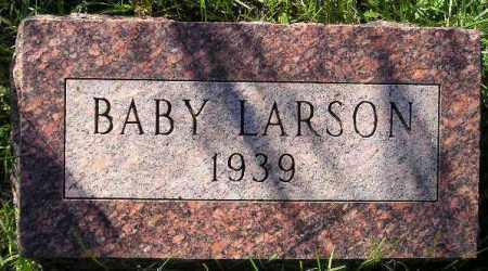 LARSON, DONALD - Codington County, South Dakota | DONALD LARSON - South Dakota Gravestone Photos