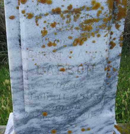 LARSON, EMIL 1895 - Codington County, South Dakota | EMIL 1895 LARSON - South Dakota Gravestone Photos