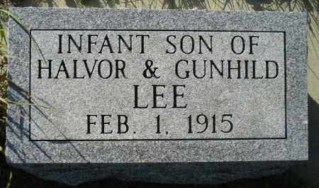 LEE, INFANT SON 1915 - Codington County, South Dakota | INFANT SON 1915 LEE - South Dakota Gravestone Photos