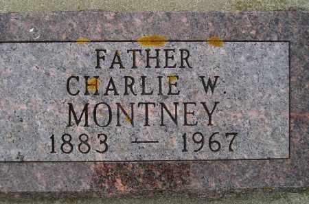 MONTNEY, CHARLIE WARD - Codington County, South Dakota | CHARLIE WARD MONTNEY - South Dakota Gravestone Photos