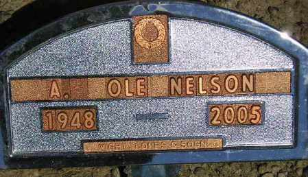 NELSON, ALBERT OLE - Codington County, South Dakota | ALBERT OLE NELSON - South Dakota Gravestone Photos
