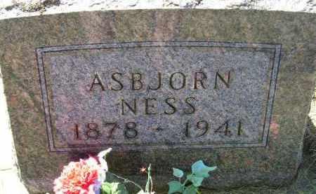 NESS, ASBJORN - Codington County, South Dakota   ASBJORN NESS - South Dakota Gravestone Photos
