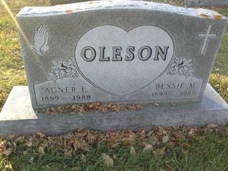 OLESON, AGNER E - Codington County, South Dakota | AGNER E OLESON - South Dakota Gravestone Photos