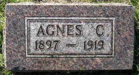 OLSON, AGNES CHRISTINE - Codington County, South Dakota | AGNES CHRISTINE OLSON - South Dakota Gravestone Photos