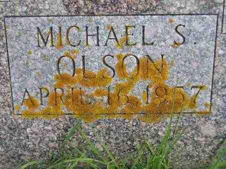 OLSON, MICHAEL STEVEN - Codington County, South Dakota | MICHAEL STEVEN OLSON - South Dakota Gravestone Photos