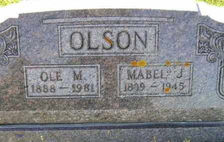 OLSON, OLE M. - Codington County, South Dakota | OLE M. OLSON - South Dakota Gravestone Photos