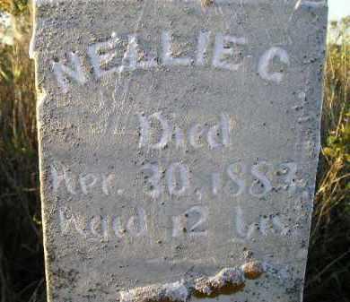 PHIPPS, NELLIE C. - Codington County, South Dakota | NELLIE C. PHIPPS - South Dakota Gravestone Photos