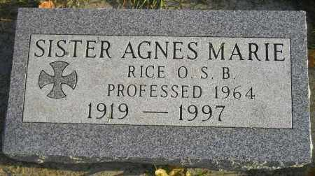 RICE, MARY - Codington County, South Dakota | MARY RICE - South Dakota Gravestone Photos