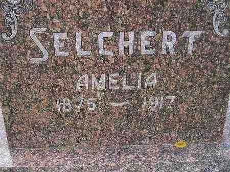SELCHERT, AMELIA - Codington County, South Dakota | AMELIA SELCHERT - South Dakota Gravestone Photos